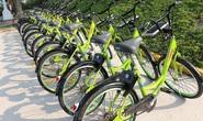Đề xuất cho Công ty Trí Nam triển khai xe đạp công cộng ở trung tâm TP HCM