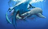 Sinh vật chưa từng thấy trên thế giới: khủng long trá hình cá mập