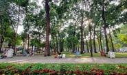 LẮNG NGHE NGƯỜI DÂN HIẾN KẾ: Giải pháp tăng diện tích công viên cây xanh