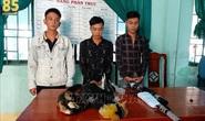 Ninh Thuận: Bắt giữ nhóm thanh niên săn bắn động vật quý hiếm
