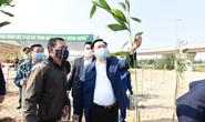 Hà Nội hướng đến mục tiêu trồng 1 tỉ cây xanh