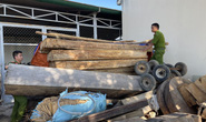 Lâm tặc hạ gỗ quý gần chốt bảo vệ rừng