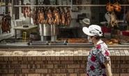 Đã bụng với tour ẩm thực Tết Nguyên đán tại Sydney