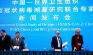WHO công bố bất ngờ: Covid-19 có thể không từ Vũ Hán