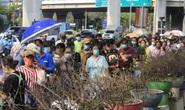 Covid-19: Thái Lan đóng cửa chợ lớn ở Bangkok, Campuchia có hơn 100 ca/ngày
