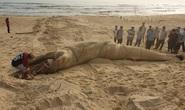 Xác cá voi khổng lồ trôi vào bờ biển Quảng Nam