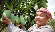 Nhiều trái cây độc, lạ dội chợ