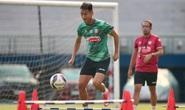 CLB TP HCM, Hà Nội FC thử sức với người nhà