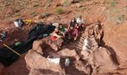 Quái thú Ninja dài 20 mét: loài chưa từng thấy trên thế giới