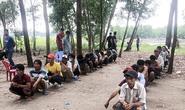 Đồng Nai: Đột kích trường gà của Bình éo, Tuấn Bao công