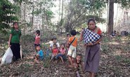 Báo động làn sóng tị nạn từ Myanmar