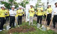 EVNSPC phát động trồng 1 tỉ cây xanh bảo vệ môi trường tại Sóc Trăng