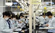 An Giang: Mỗi năm đưa ít nhất 300 lao động ra nước ngoài làm việc