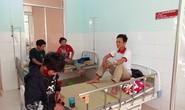 Ăn nấm lạ, 5 người ở Quảng Nam nhập viện