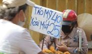 Nghịch lý xoài mút Trung Quốc bán chạy giữa lúc xoài Việt Nam thu hoạch rộ