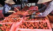 Gỡ khó cho nông sản vùng dịch