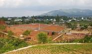 Lâm Đồng: Đình chỉ công tác hàng loạt cán bộ buông lỏng quản lý đất đai