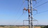 PC Quảng Ngãi: Triển khai các giải pháp an toàn cho lưới điện 110kV trong mùa khô