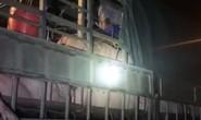 Gần 20 người trốn trên xe tải chở lợn thông chốt kiểm soát dịch Covid-19