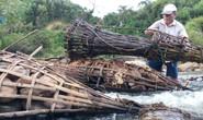 Dùng a'ruung bắt cá để bảo vệ môi trường