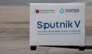 Chính phủ đồng ý để Tập đoàn T&T mua 40 triệu liều vắc-xin Sputnik V