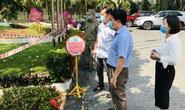 Quảng Nam nỗ lực giải cứu công dân từ nước ngoài về an toàn