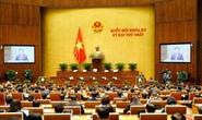 6 người trúng cử đại biểu Quốc hội khóa XV có đơn phản ánh