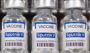 Gửi 10.000 liều vắc-xin Covid-19 Sputnik V do Việt Nam gia công sang Nga kiểm nghiệm