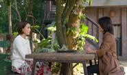 Phim truyền hình Việt: Dài, dai và dở