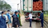 Tạm giữ 29 tấn khoai tây Trung Quốc ngược lên Đà Lạt giữa lúc dịch bệnh