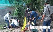 Hỗn chiến kinh hoàng ở Long An, 2 người tử vong tại chỗ