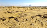 Hàng ngàn mộ cổ xếp thành bản đồ thiên hà hiện ra giữa sa mạc