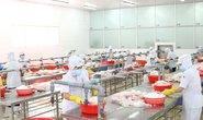 Giúp doanh nghiệp khôi phục sản xuất - kinh doanh