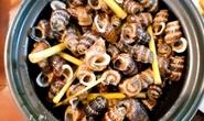 Cách chế biến món ốc len xào dừa trứ danh vùng cực Nam Tổ quốc