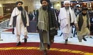 Afghanistan: Mỹ đã thả nhiều hổ lớn về rừng?