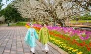 Tuyệt đẹp áo dài trong triển lãm online Huế - Kinh đô Áo dài Việt Nam