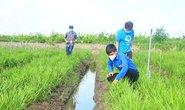Giúp dân thu hoạch nông sản