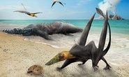 Sinh vật chưa từng thấy trên thế giới hiện về từ siêu lục địa tan vỡ