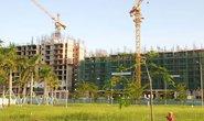 Doanh nghiệp Việt chết vì đầu tư theo phong trào