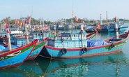 Giá dầu tăng, tàu cá Lý Sơn nằm bờ