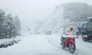 Sa Pa: Mưa tuyết trắng trời đất