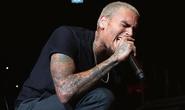 Đánh người, ca sĩ Chris Brown bị bắt