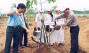 """TP Hồ Chí Minh: Phát động trồng cây """"Đời đời nhớ ơn Bác Hồ"""""""