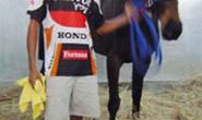 Ngựa Úc nhập trường đua Phú Thọ