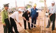 TPHCM: Trồng thêm hơn 34.000 cây xanh