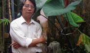 Nhạc sĩ Phó Đức Phương kể chuyện tình Trương Chi