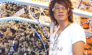 Lương Bằng Quang: Tôi sáng tác cho chính mình