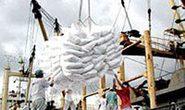 Thái Lan : Giá gạo xuất khẩu đạt kỷ lục mới 1.000 USD/tấn