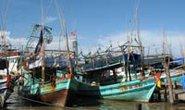 Thủ tục hỗ trợ nhiêu khê, tàu cá vẫn nằm bờ