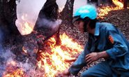 Xác định nghi can vụ cháy Vườn Quốc gia Tràm chim
